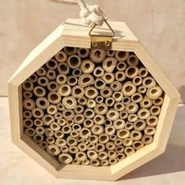 Ruche en bois massif pour abeilles