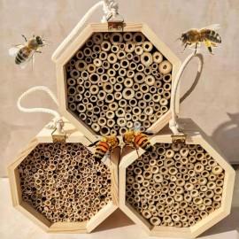 trio de Ruches en bois massif pour abeilles