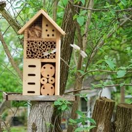 Maison en bois nid naturel pour abeille