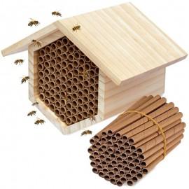 Recharges de Tubes en papier pour dortoir d'abeille - 50 pièces
